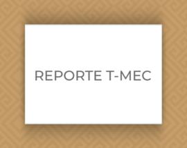 B_REPORTE-TMEC
