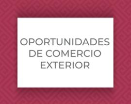 Int_OPORTUNIDADES-DE-COMER