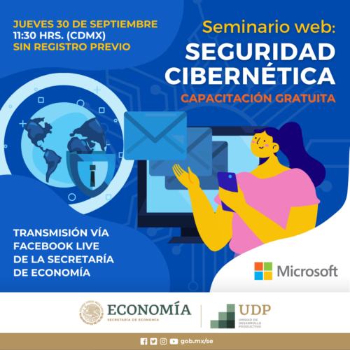 SEMINARIO WEB CIBERSEGURIDAD FB-IG